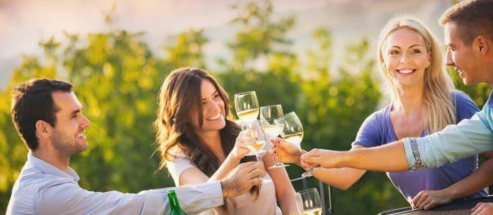 Niagara Winery Experience