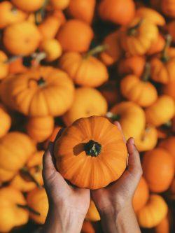 Niagara Halloween pumpkin
