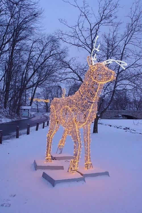 Winter Festival Of Lights Starts November 16 2019
